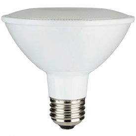 LED PAR 30 Lamps