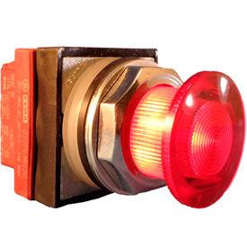 Springer Controls 30mm Illuminated Mushroom-Head Push Buttons