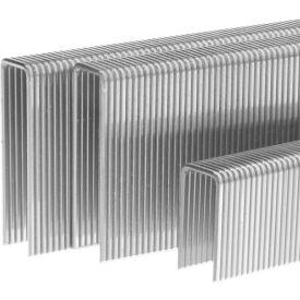 Stainless Steel Staples