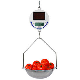 Solar Powered Hanging Scales