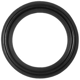 Oil-Resistant Clean Room Buna-N Gaskets for Quick-Clamp Tube Fittings
