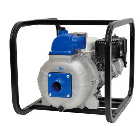 Specialty Engine Driven Pumps