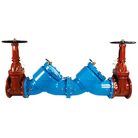 Watts Double Check Valve Assembly Flanged Connection