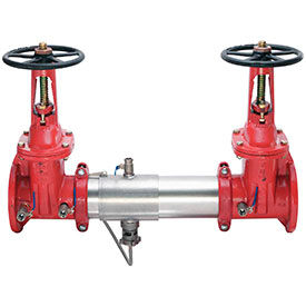 Watts Reduced Pressure Zone Assembly Flanged Connection
