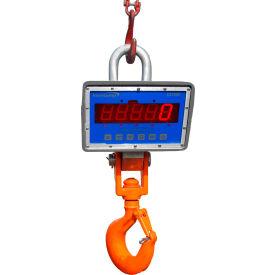 Intercomp Hanging & Crane Scales
