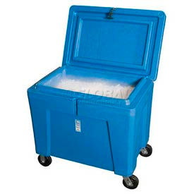 Polar Chest Dry Ice Containers