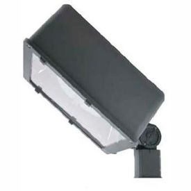 Induction Flood Lights