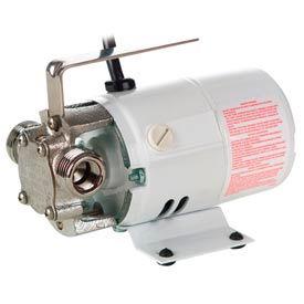 Pony Pump Non-Submersible Utility Pumps