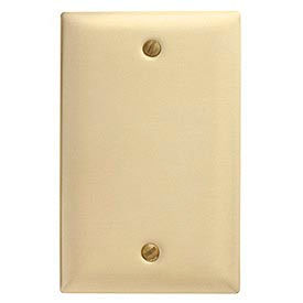 Bryant® Mid-Size Nylon Blank Box Mount Wall Plates