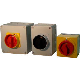 Springer Controls / MERZ Enclosed Disconnect Switches