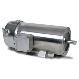 Leeson Premium Washguard SS Brake Motor