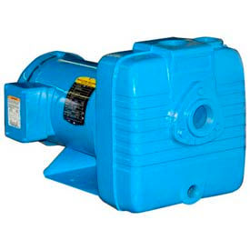 Self Priming Pump