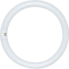 Circline Fluorescents