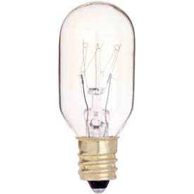Type S & T Incandescent Lamps