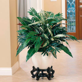 """OfficeScapesDirect 32"""" Aspidistra & Chinese Evergreen Silk Plant"""