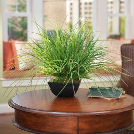 OfficeScapesDirect Grass Centerpiece Silk Plant