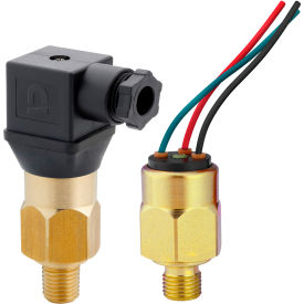 """PVS Sensors 151024, AVA-1-4M-C-FL(Adj. 5-28 INHg) Model 1, Brass, 1/4 NPT, SPDt, 18"""" Flying Leads"""
