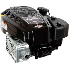 Briggs & Stratton 125P02-0012-F1, Gas Engine 850 Series Lawn Mower Engine, Vertical Shaft by