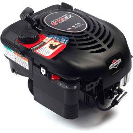 Briggs & Stratton 104M02-0028-F1, Gas Engine 725EXi Series, Vertical Shaft by