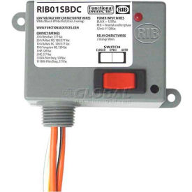 RIB® Dry Contact Input Relay RIB01SBDC, Enclosed, 120VAC, 20A, SPST, Override