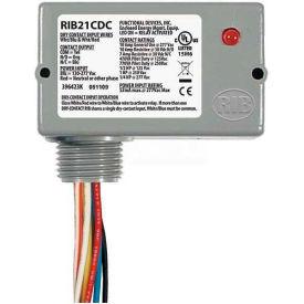 RIB® Dry Contact Input Relay RIB21CDC, Enclosed, Pilot, 120-277VAC, 10A, SPDT