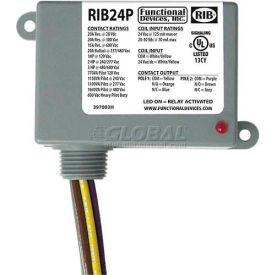 RIB® Enclosed Power Relay RIB24P, 20A, DPDT, 24VAC/DC