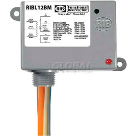RIB Enclosed Latching Relay RIBL12BM, 20A, 12VAC/DC, W/Aux Contact by