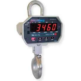 Measurement Systems International MSI-3460-250 NTEP Wireless LED Crane Scale 250lb x 0.1lb