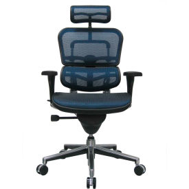 Eurotech Ergohuman Executive High Back Chair - ME7ERG-BLUE(N) - Blue Mesh