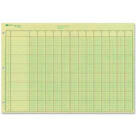 "Rediform® Side Punched Analysis Pad, 11"" x 16-3/8"", 13 Columns, 40 Lines, Green, 50 Sheets/Pad"