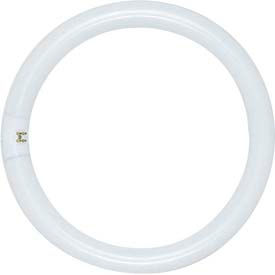 Satco S6503 Fc12t9/Cw/Rs 32w Fluorescent W/ 4 Pin Base - Cool White Bulb - Pkg Qty 12