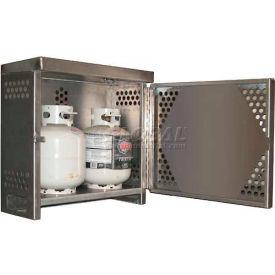 Securall® 2 Cylinder Vertical Steel LP/Oxygen Cabinet Gray