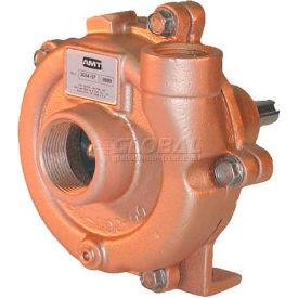 AMT 3704-97 Straight Centrifugal Pedestal Pump, Bronze, Bronze Impeller, Viton Seal, 1hp Minimum