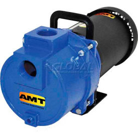 """AMT 4782-95 1-1/2"""" NPT Cast Iron 2 Stage Sprinkler/Booster Pump, 157gpm, 150psi, Buna-N Seal, 3hp"""