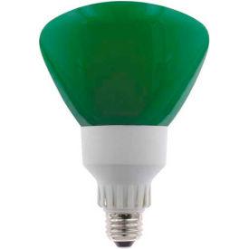 Sunlite® 05610-SU SL25R40/G 25W R40 Reflector Colored CFL Light Bulb, Medium Base, Green - Pkg Qty 12