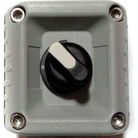 T.E.R., F71EG00000001001 VICTOR Wall Mount Control Station, Gray, 1 Hole, 2 Position Selector