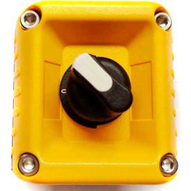 T.E.R., F71EY00000001006 VICTOR Wall Mount Control Station, Yellow, 1 Hole, 2 Position Selector
