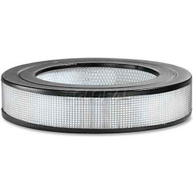 """Honeywell HWLHRFD1 KAZ Permanent Replacement Filter, 1.7""""W x 4.8""""H, HEPA, White"""