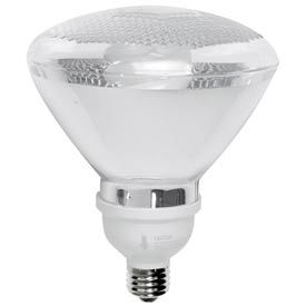 TCP 2P3819 19 Watt Par38 Flood- CFL Bulb