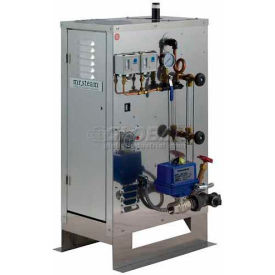 Mr. Steam CU1250 30KW 208 Volts, 3 Phase, Commercial Steambath