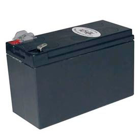 Tripp Lite RBC2A Replacement Battery Cartridge for Select APC UPS Models