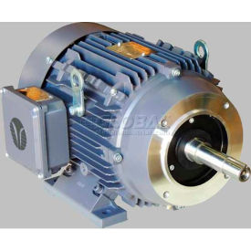 TechTop JM TEFC Enclosure Motor GA3-CI-TF-284JM-2-BR-D-25, 284JM Frame, 25HP, 3600RPM, 2 Poles