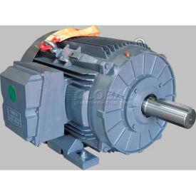 TechTop Premium Efficiency Motor GR3-CI-TF-444TS-2-BR-E-125, 444TS Frame, 125HP, 3600RPM, 2 Poles
