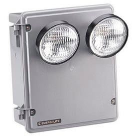 Emergi-Lite 009592_E Replacement Circuit Board for KSC18-2