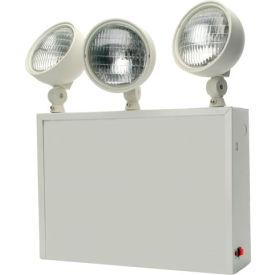 Emergi-Lite NYLED-2/3 NYC Battery Unit - 12V 50W, 3- 1W LED Heads