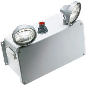 Emergi-Lite 5500019_E Replacement Lamp for 6HZM24-2
