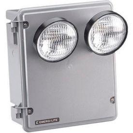 Emergi-Lite KSC25-2-F Harsh Environment Lighting - 6V 25W