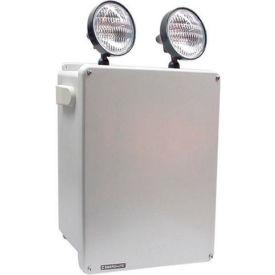 Emergi-Lite KSM110-2 Steel Harsh Environment Lighting - 6V 110W