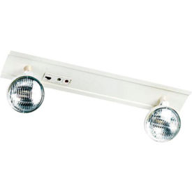 Emergi-Lite TSM18-2 T-Bar Lighting Unit - 6 Volt 18W