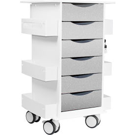 "TrippNT™ Core Locking 6 Drawer Lab Cart, 23""W x 19""D x 35""H, Silver Metallic"